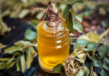 HOMEMADE CURRY LEAF HAIR OIL